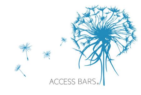 AccessBars_saraca.sk